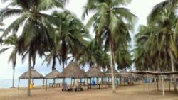 Togo percussiereis